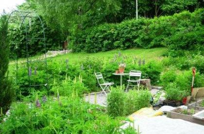 Trädgården 2005