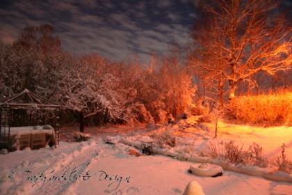 vintertradgard