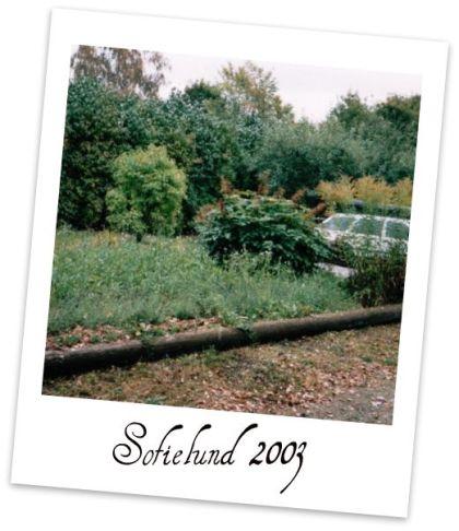webb2003b