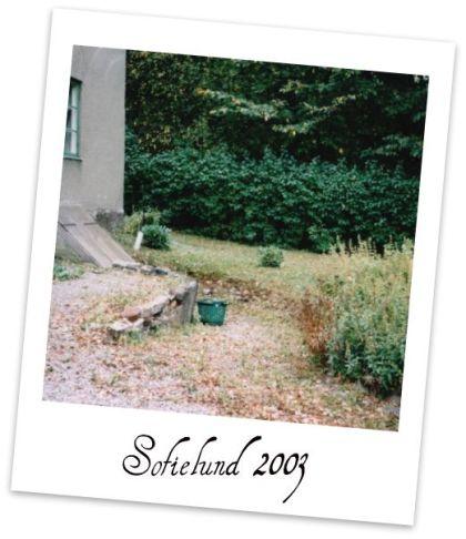 webbsofielund2003