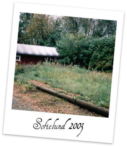 webbsofielund2003a