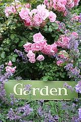 gardenrose (kopia)